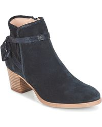André Adene Low Ankle Boots - Blue