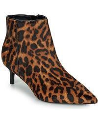 Lauren by Ralph Lauren Saybrook Iii-boots-dress Low Ankle Boots - Brown