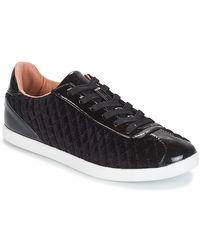 André Velvet Shoes (trainers) - Black