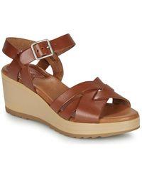 Kickers Widjik Sandals - Brown