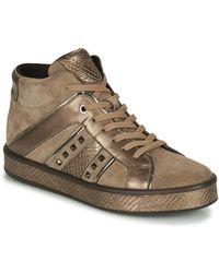 Geox Leelu Shoes (high-top Trainers) - Brown