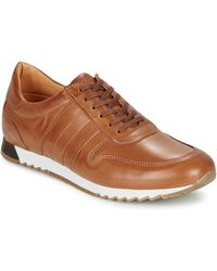 So Size Felix Shoes (trainers) - Brown