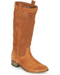 Betty London Divoui High Boots - Brown