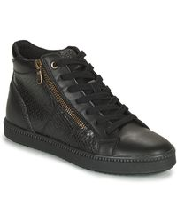 Geox Blomiee Shoes (high-top Trainers) - Black