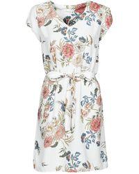 Betty London Owaka Dress - White