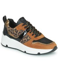 Betty London Priette Shoes (trainers) - Brown