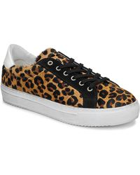 IKKS Bp80245-62 Shoes (trainers) - Brown