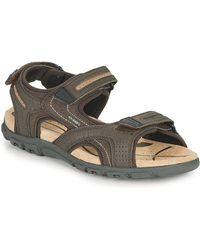 Geox Uomo Sandal Strada D Sandals - Brown