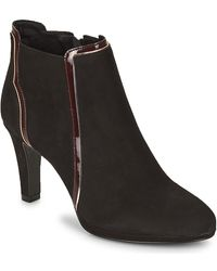 André Erika Low Ankle Boots - Black