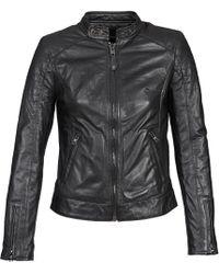 Schott Nyc Harvey Leather Jacket - Black