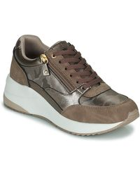 Xti 43124 Shoes (trainers) - Brown