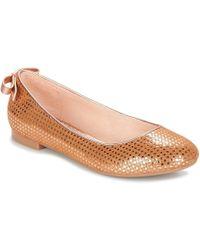 pretty nice b0e9c ff3f4 Dabou Ballerine Shoes (pumps / Ballerinas) - Brown
