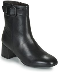 Stonefly Lindy 6 Low Ankle Boots - Black
