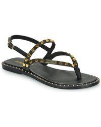 Les Tropéziennes Par M Belarbi Pitaya Flip Flops / Sandals (shoes) - Black