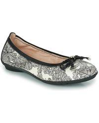 Hispanitas Capri Shoes (pumps / Ballerinas) - Black
