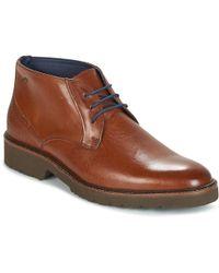Fluchos Cavalier Men's Mid Boots In Brown