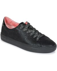 Mellow Yellow Evalie Shoes (trainers) - Black