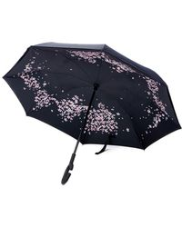 Unique Umbrellas - Black Flower Rim Umbrella - Lyst