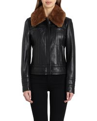 Badgley Mischka - Badgley Mischka Leather Aviator Jacket With Genuine Shearling - Lyst