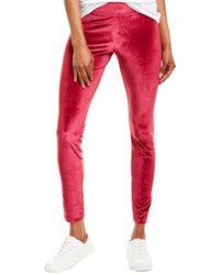 Hue Velvet Legging - Red