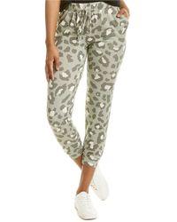 Ariella Leopard Jogger Pant - Green