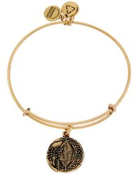 ALEX AND ANI - Oghams Elder Expandable Bangle - Lyst