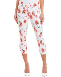 Insight Pant - Red