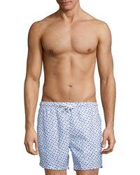 Bertigo Printed Swim Short - Blue