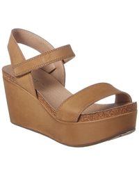 Chocolat Blu Watson Ankle Strap Wedge Sandal - Brown