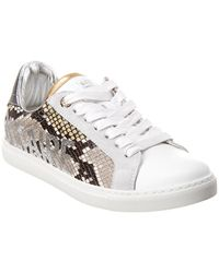 Zadig & Voltaire Wild Snake- Embossed Leather Trainer - White