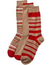 Sperry Top-Sider 3pk Stripes Crew Socks - Red