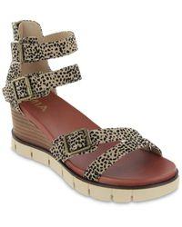 MIA Darcel-f Wedge Sandal - Brown