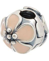 PANDORA Moments Collection Silver & Enamel Cherry Blossom Clip Charm - Metallic