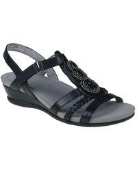 Earth Falmouth Leather Sandal - Black