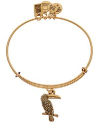 ALEX AND ANI Team Usa Toucan Expandable Bracelet - Metallic