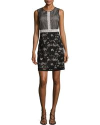 Adrianna Papell Embroidered Mesh Flared Dress - Black