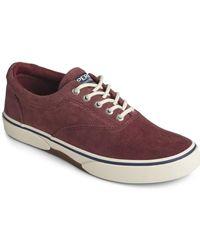 Sperry Top-Sider Halyard Cvo Corduroy Sneaker - Multicolor