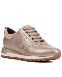 Geox Tabelya Leather Sneaker - Multicolor