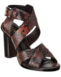 Joie Avery Snake-embossed Leather Sandal - Brown