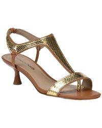 Donald J Pliner Caro Metallic Sandal