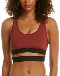 Koral Activewear Romance Shantung Sports Bra - Red