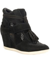 Ash Bowie Mesh Wedge Sneaker - Black