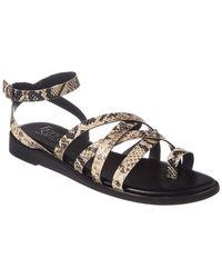 9319267d7 Franco Sarto - Georgie Snake Embossed Leather Sandal - Lyst