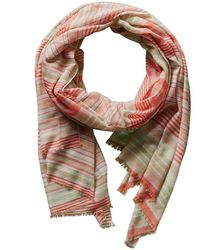 Forte - Forte Quince Stripe Scarf - Lyst