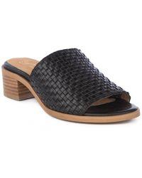 Seychelles Hard To Find Leather Sandal - Black