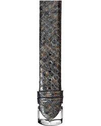 Philip Stein Snakeskin Watch Strap - Large - Multicolour