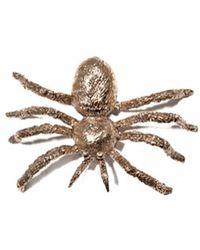 Bernard Delettrez - Spider Brooch - Lyst