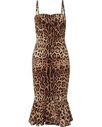 Dolce & Gabbana - Leopard Print Peplum Dress - Lyst