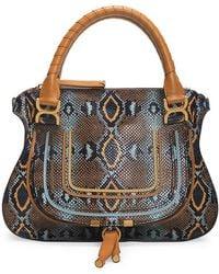 Chloé Medium Marcie Python-embossed Leather Satchel - Multicolor