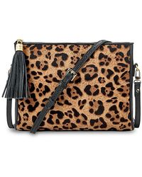 Gigi New York Hailey Leopard-print Calf Hair Crossbody Bag - Brown